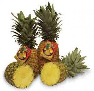 18 - Pineapple web