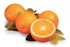 3-4-Florida-Juice-Oranges-web