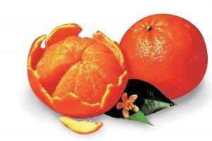 37-Sunburst-Tangerines