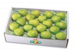 84 - Anjou Pears Single Layer web