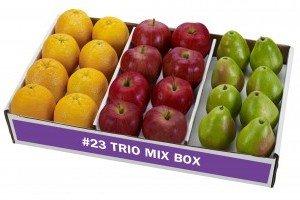 Trio Mix Box #23